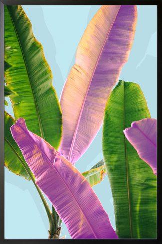 Banana leaves dual tone poster