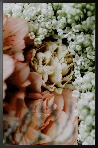 Jasmine photography poster