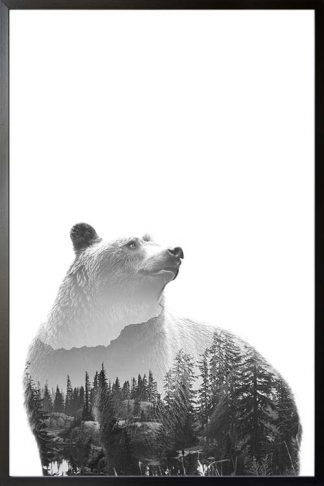 Bear Forest poster