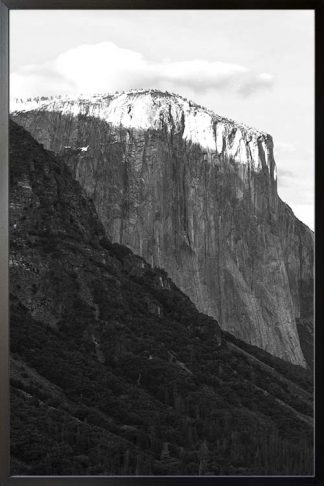 Rocky mountain and pine trees no. 1 photography poster