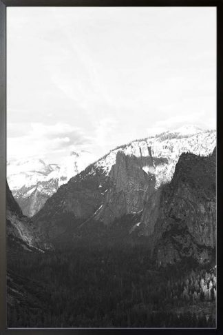 Rocky mountain and pine trees no. 2 photography poster