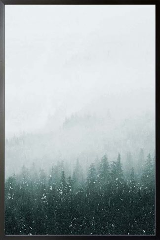 Foggy mountain and pine trees no. 2 photography poster