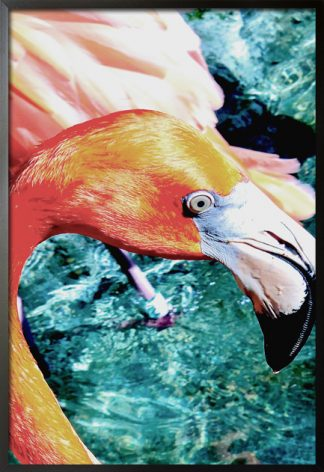 A poster of flamingo in turquoise tone water from artdesign with frame