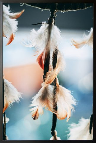 feather from dream catcher Poster