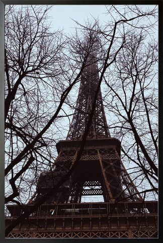 Twigs and eiffel tower Poster